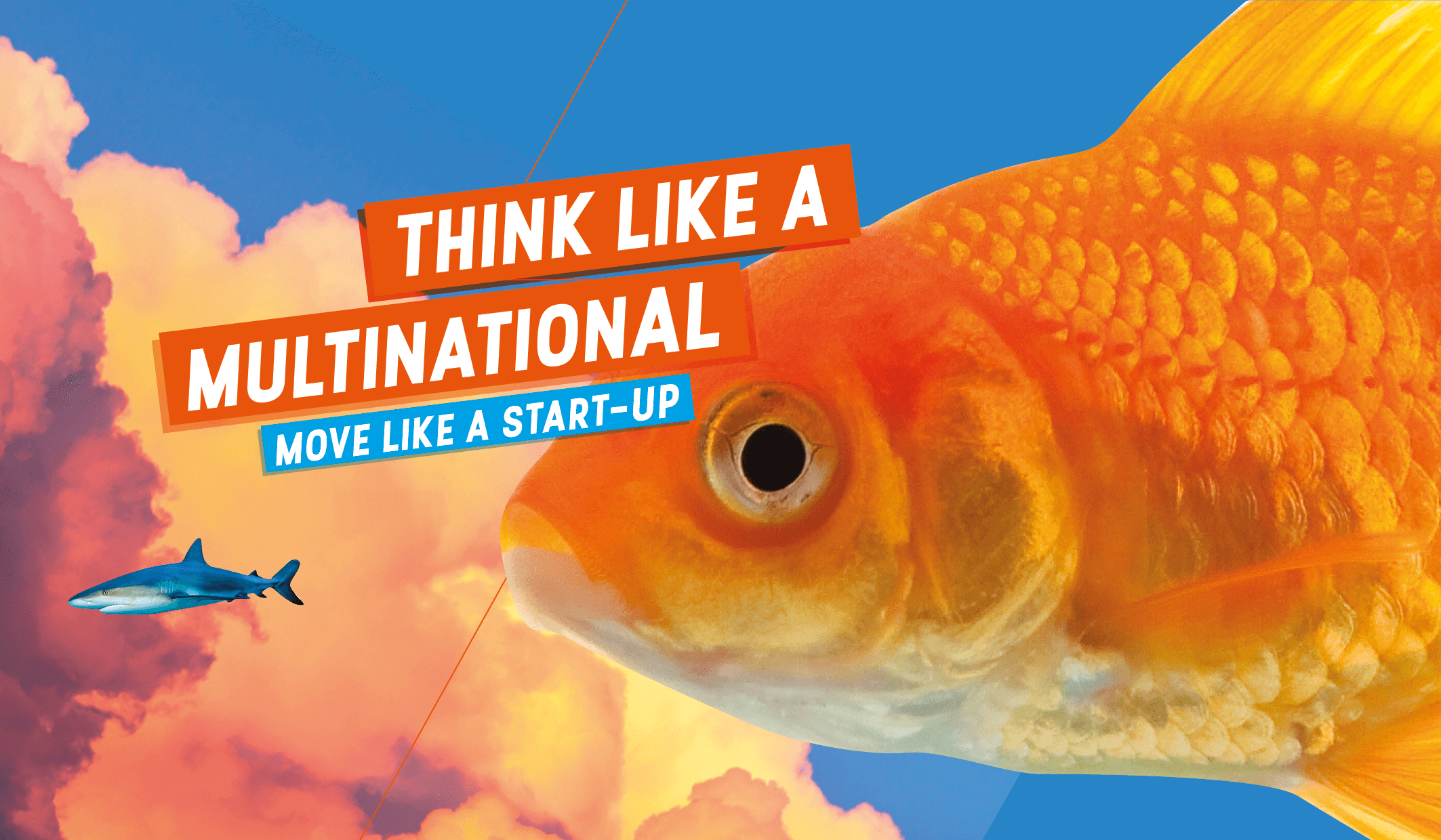 Think like a multinational - move like a start up